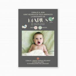 Faire-part naissance champetre