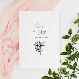 Carton save the date chic
