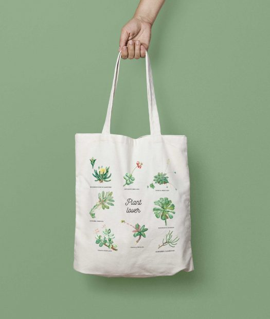 tote bag succulente